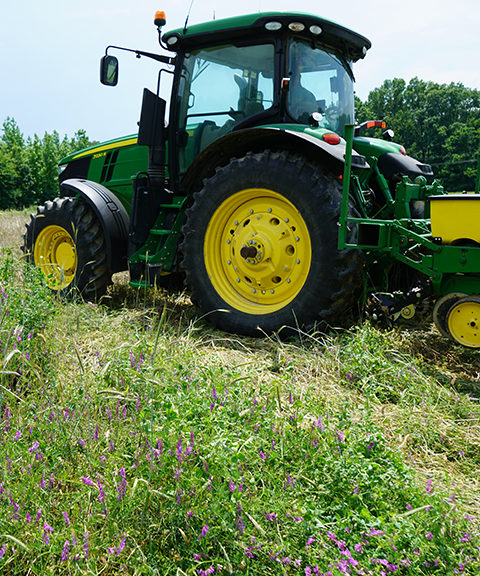 Planting a cover crop