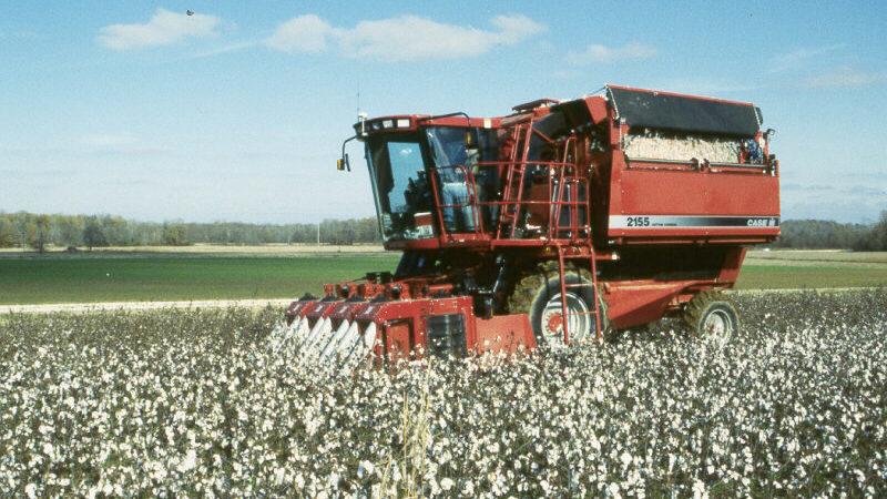 Case cotton picker