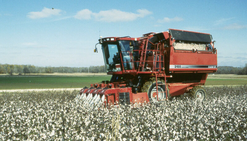 Case cotton picker