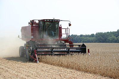 Harvesting crop